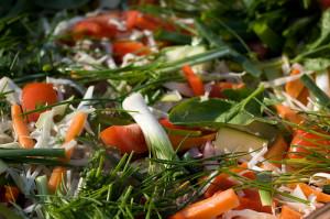 Egészséges ételek webáruháza